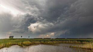 Pogoda na jutro: miejscami silny deszcz i burze