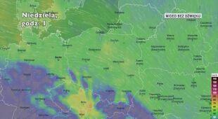 Prognozowane porywy wiatru w ciągu najbliższych dni (Ventusky.com)